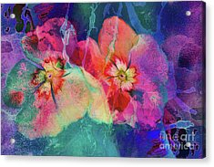 Impatiens Abstract Acrylic Print by Deborah Benoit