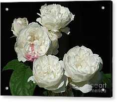 Acrylic Print featuring the photograph Imperfection by Victor K
