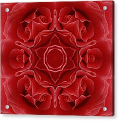 Imperial Red Rose Mandala Acrylic Print by Georgiana Romanovna