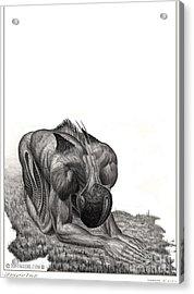 Impetus Graphite Acrylic Print by Tony Koehl