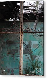 Imposition Acrylic Print by Amanda Barcon
