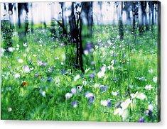 Impressionistic Photography At Meggido 1 Acrylic Print
