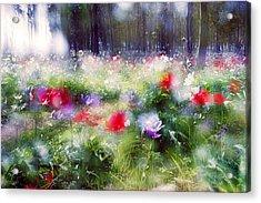 Impressionistic Photography At Meggido 2 Acrylic Print