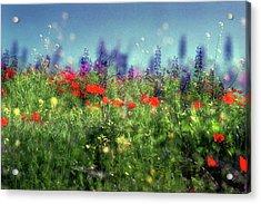 Impressionistic Springtime Acrylic Print by Dubi Roman