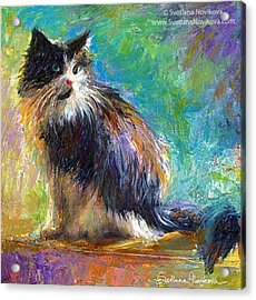 Impressionistic Tuxedo Cat Painting By Acrylic Print