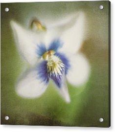 Impressions Of Spring Acrylic Print