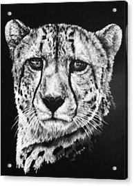 Impressive Acrylic Print by Barbara Keith