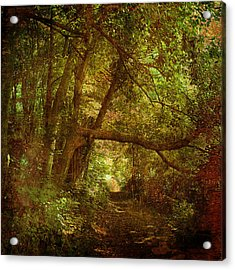 In A Forest Acrylic Print by Inesa Kayuta