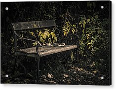 Acrylic Print featuring the photograph In A Forgotten Corner by Odd Jeppesen