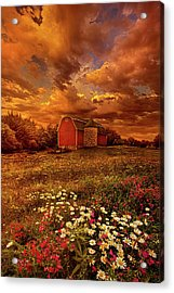 In A Heartbeat Acrylic Print by Phil Koch