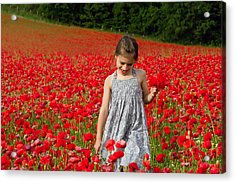 In A Sea Of Poppies Acrylic Print