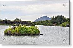 Acrylic Print featuring the photograph In An Iceland Lake by Joe Bonita