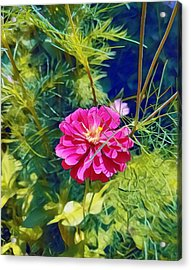 In Bloom Acrylic Print