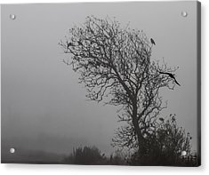 Acrylic Print featuring the photograph In Days Of Silence by Odd Jeppesen