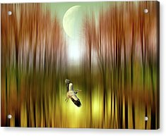In Flight Acrylic Print by Jessica Jenney
