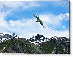 In Flight Acrylic Print