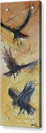 In Flight Acrylic Print by Ron Stephens