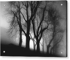 In Fog Acrylic Print by Peter Mlynarcik