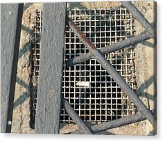 In Grates Acrylic Print by Jacob Stempky