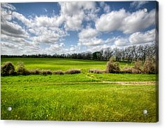 In Green Pastures Acrylic Print
