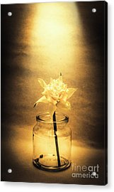 In Light Of Nostalgia Acrylic Print