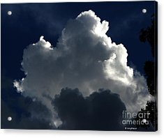 In Light Of Things Acrylic Print by Greg Patzer