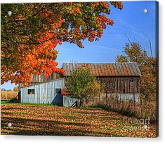 In Midst Of Change Acrylic Print by Robert Pearson