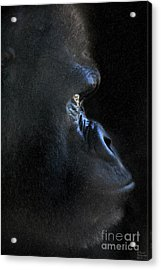 Gorilla In The Dark Large Canvas Art, Canvas Print, Large Art, Large Wall Decor, Home Decor, Photogr Acrylic Print