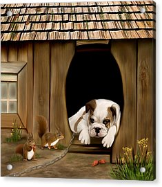 In The Dog House Acrylic Print by Thanh Thuy Nguyen