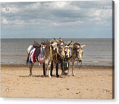 In The Donkey Ride Que Acrylic Print