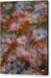 In The Garden Acrylic Print by Eileen Shahbazian