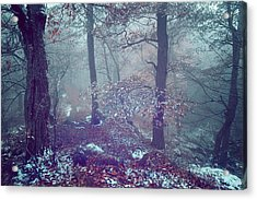 In The Heart Of Blue Woods Acrylic Print by Jenny Rainbow