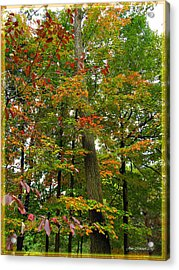 Acrylic Print featuring the photograph In The Height Of Autumn by Joan  Minchak