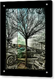 In The Here And There Acrylic Print by Mimulux patricia no No