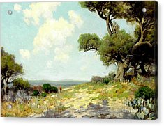 In The Hills Of Southwest Texas 1912 Acrylic Print
