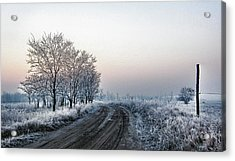 In The Lonsome Acrylic Print