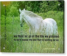 In The Meadow Quote Acrylic Print by JAMART Photography