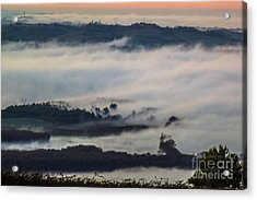 In The Mist 2 Acrylic Print