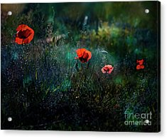 In The Morning Acrylic Print by Agnieszka Mlicka