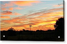 In The Morning Still Acrylic Print