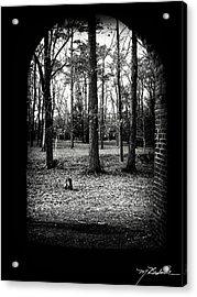 In The Shadows Acrylic Print by Melissa Wyatt