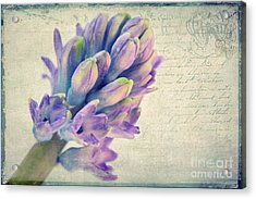 In The Spring Acrylic Print by Angela Doelling AD DESIGN Photo and PhotoArt