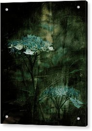 In The Still Of The Night Acrylic Print by Bonnie Bruno