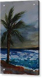 In The Storm Acrylic Print by Yvonne Kinney