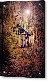 In The Sugar Bush Acrylic Print