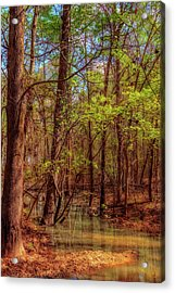 In The Swamp Acrylic Print