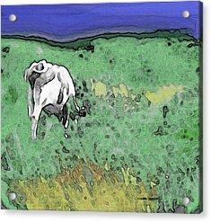 In The Sweet Fields Acrylic Print