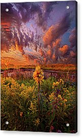 In The Warmth Of Nature's Hand Acrylic Print by Phil Koch