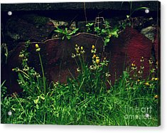 Acrylic Print featuring the photograph In The Wild by Kristine Nora
