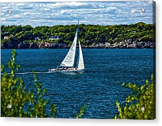 In The Wind Acrylic Print by Joel P Black